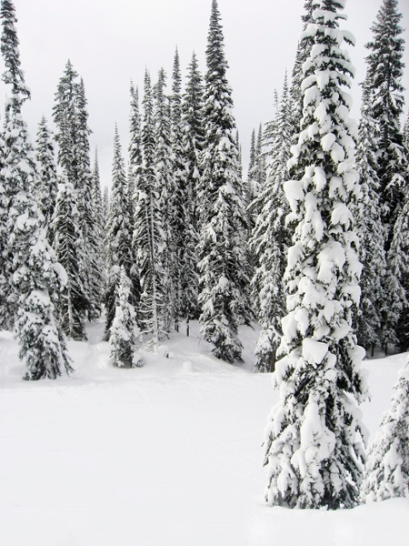 revelstoke-ski-packages